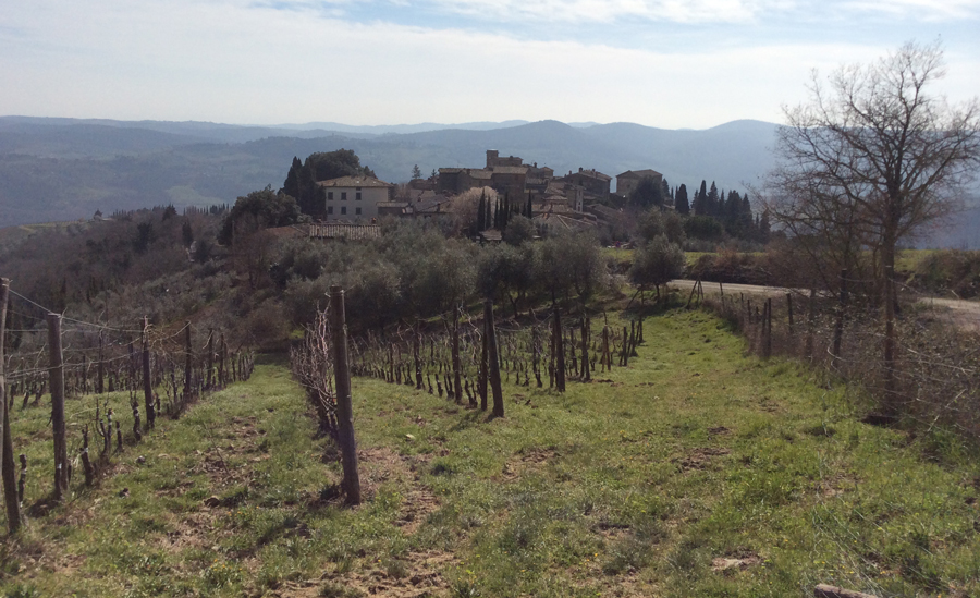 A View of Chianti